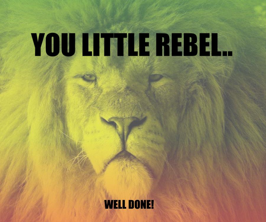 You little rebel!